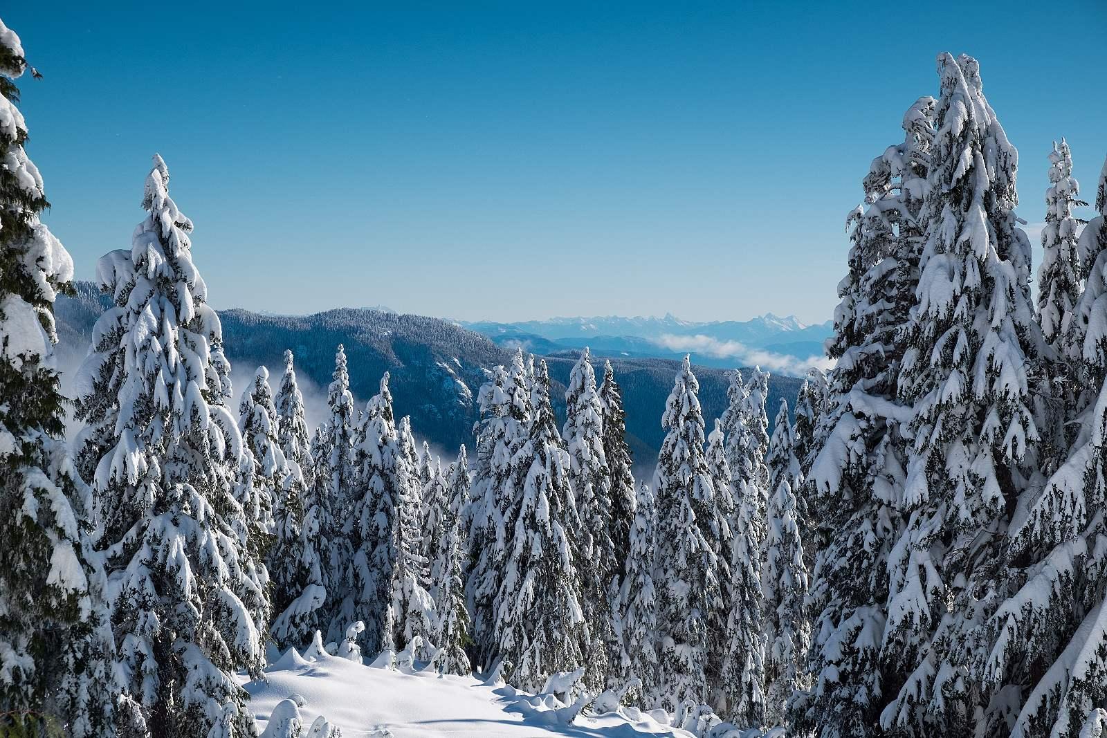FOTOLAB fotorádce Fotíme v zimě