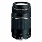 Canon 75-300 zoom