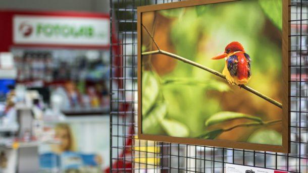 FOTOLAB fotovýstava v Karlových Varech v OC Varyáda
