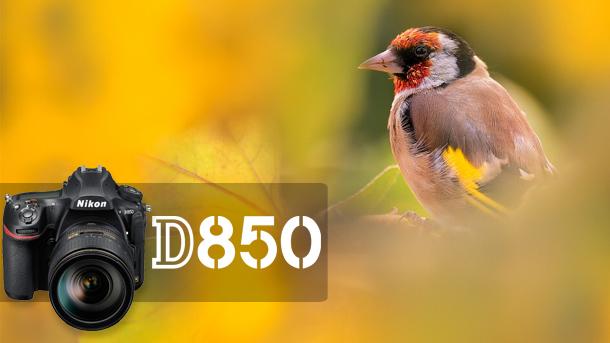 D850 Recenze