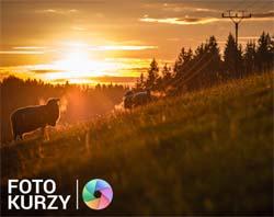 FOTOLAB 2 denní zážitkový fotokurz - Nárovní park Podyjí
