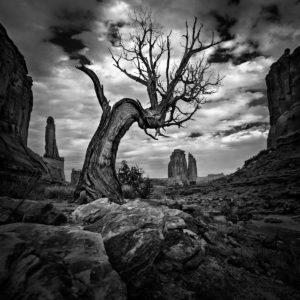 Národní park Arches, Utah, USA. D600, Nikon 17-35mm f/2,8 AF-S, clona f/9, čas 1/250, ohnisko 17mm.