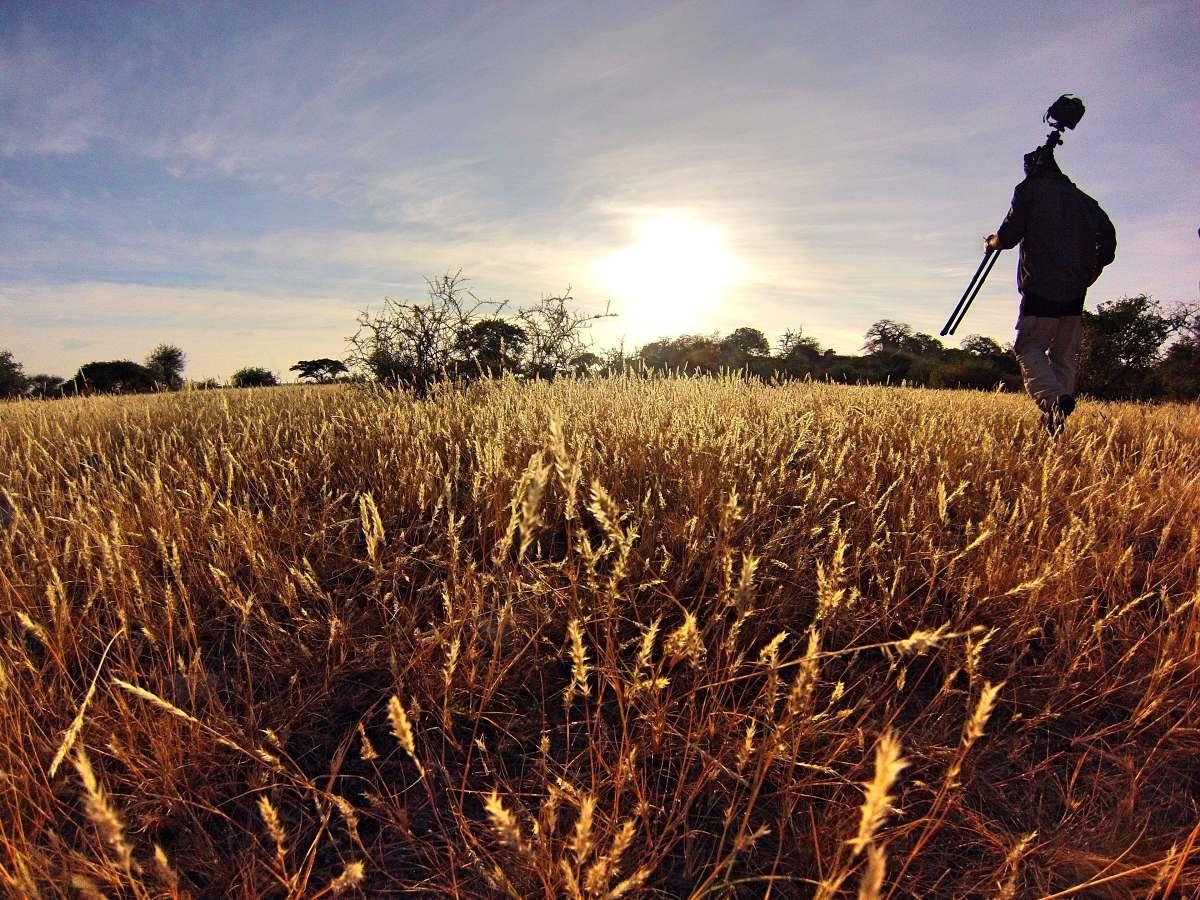 muž nesoucí fotoaparát se stativem přes pole
