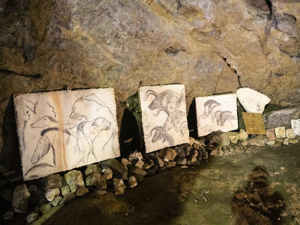 býčí skála-moravksý kras