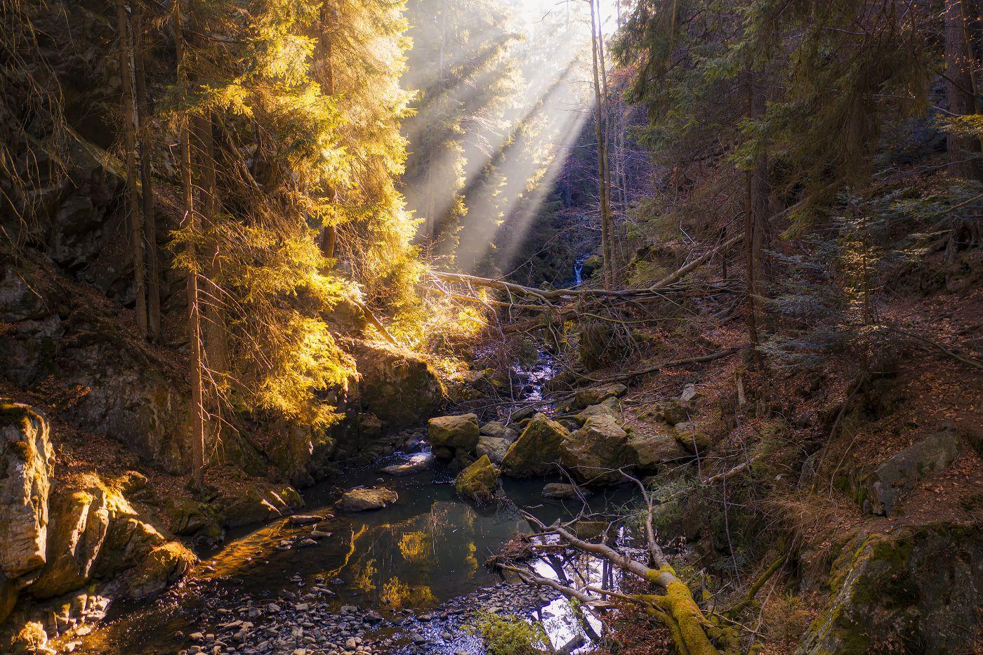 Doubrava pod Sokolohrady, Železné hory