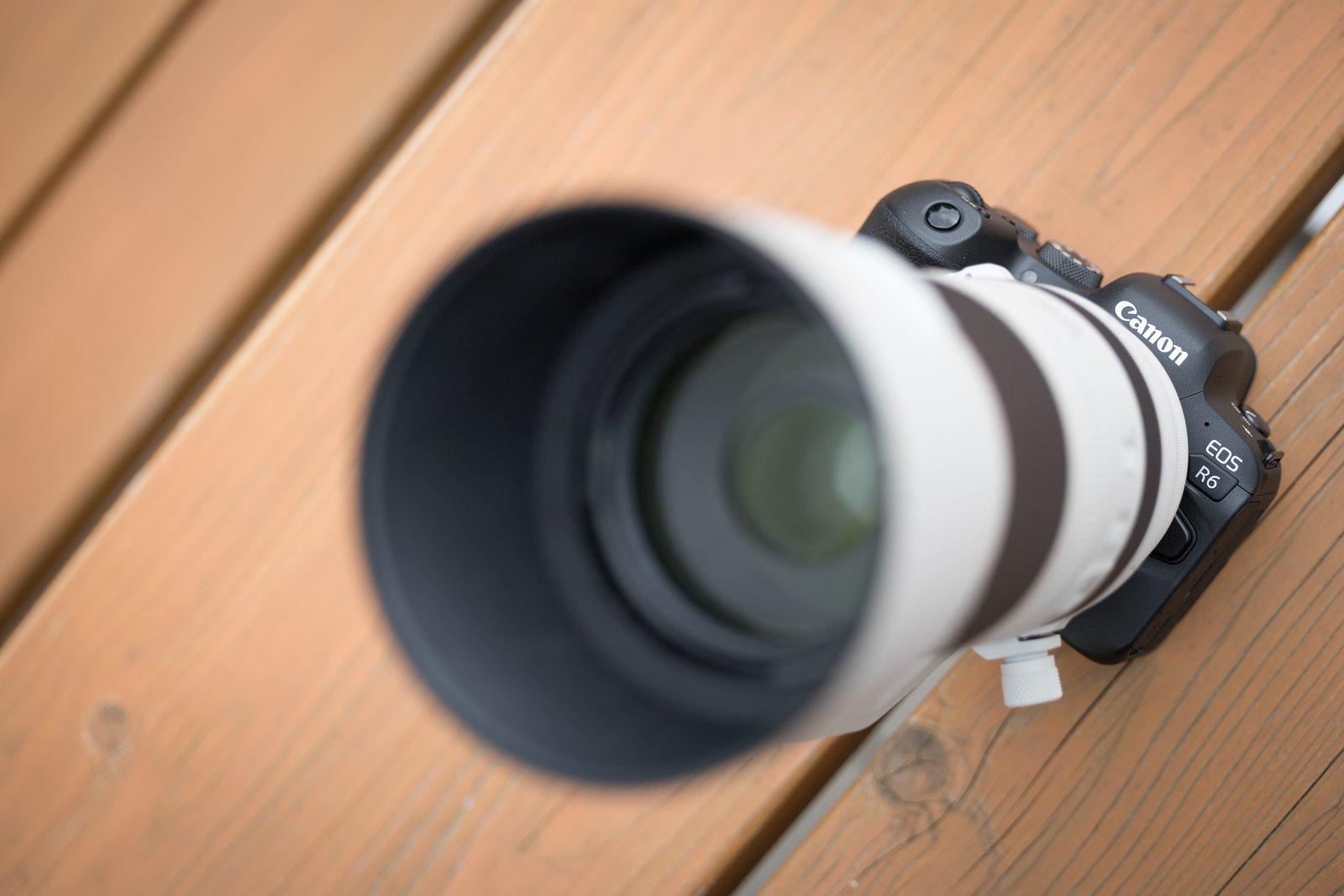 Canon EOS R6 recenze (objektiv Canon RF 100-500mm f /4.5-7.1L IS USM)