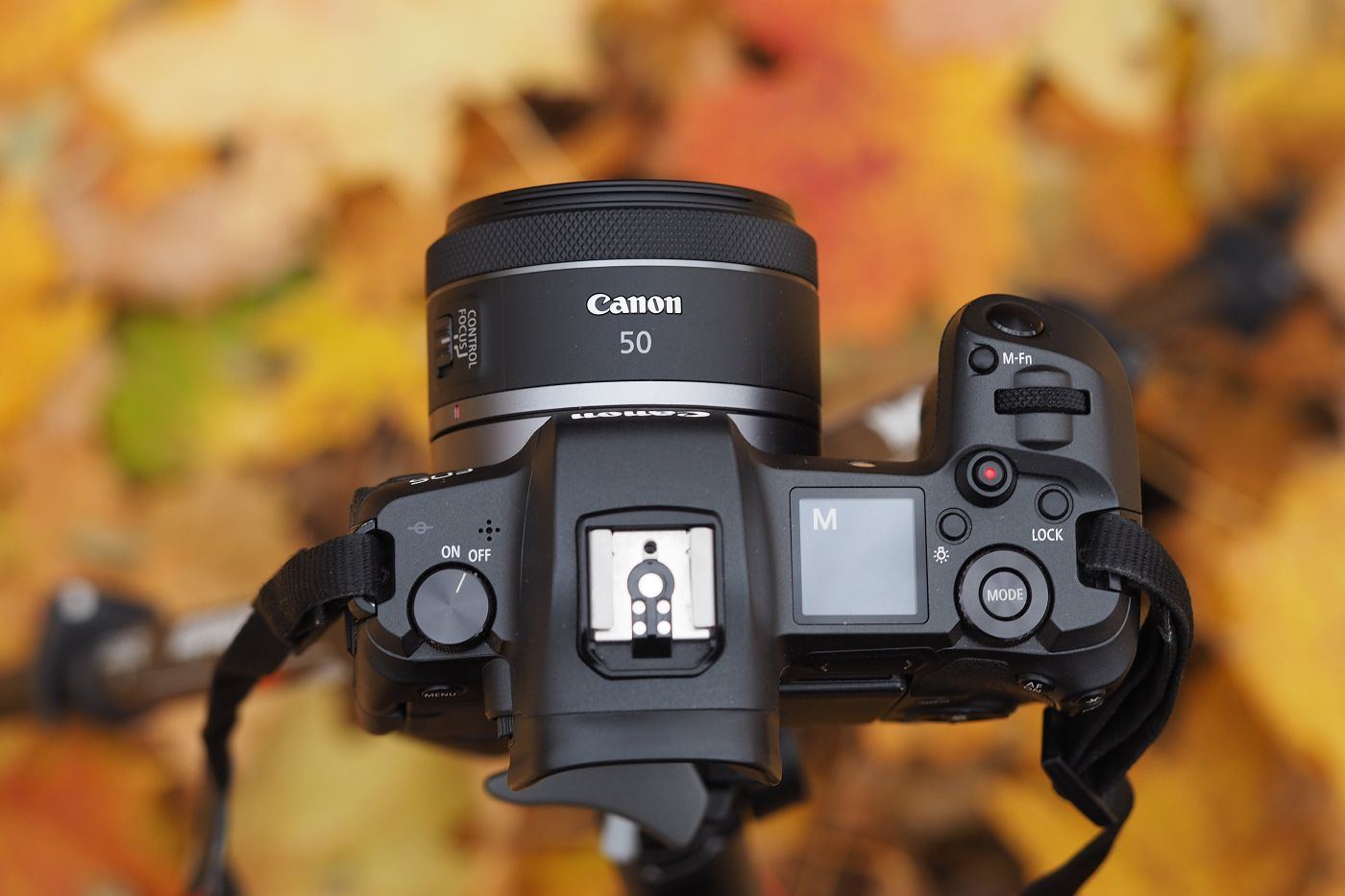 Canon RF 50 mm F/1,8 STM: RECENZE