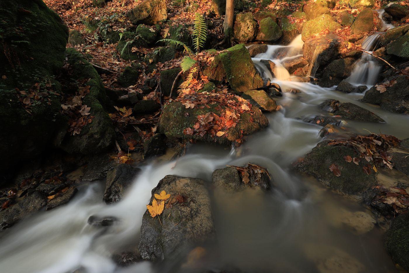 Recenze Canon EOS 6D mark II - vzorové foto, autor fotografie: Michael Jurák