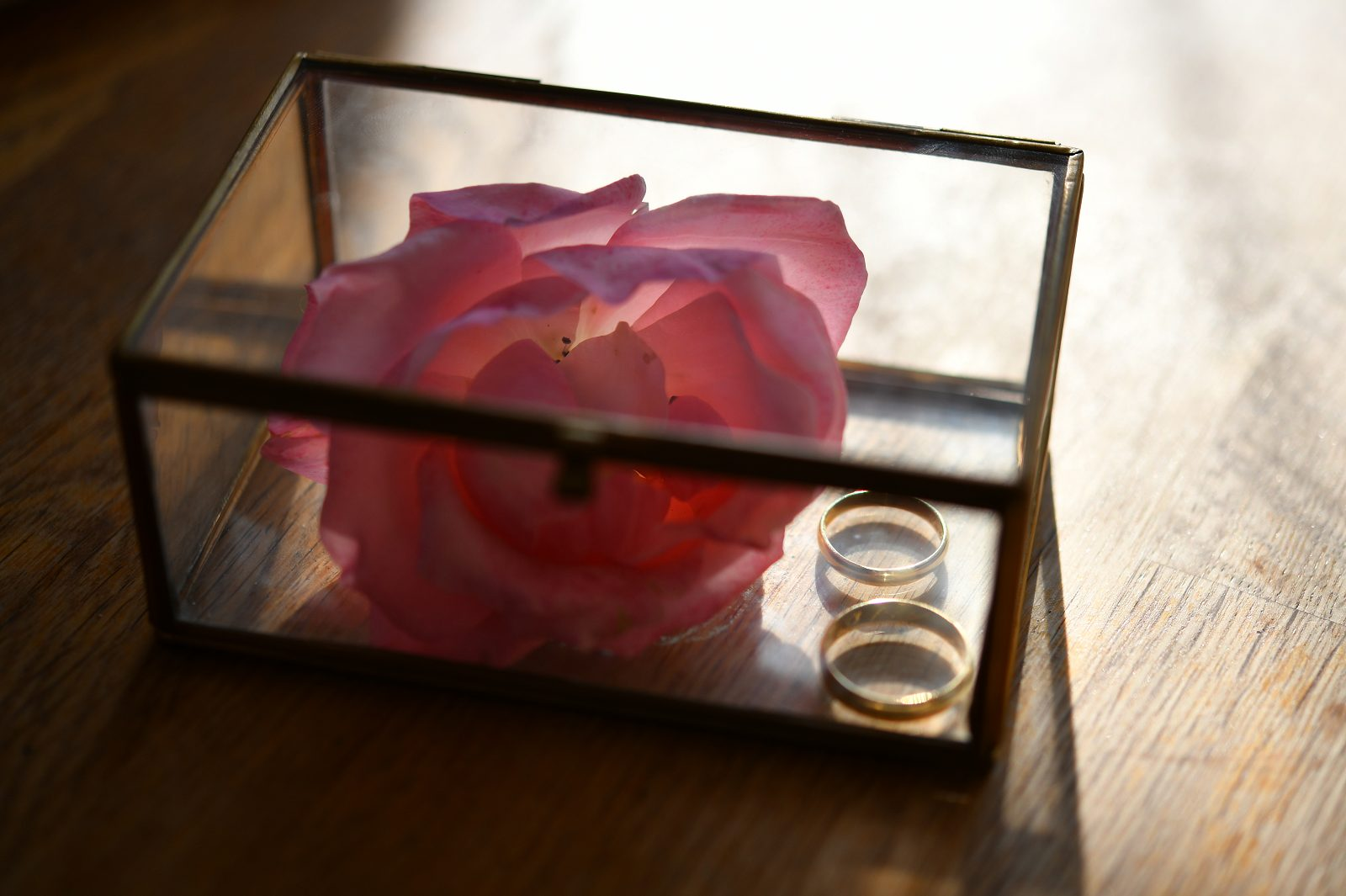 Svatební fotografie – svatba je výzvou pro makrofotografy