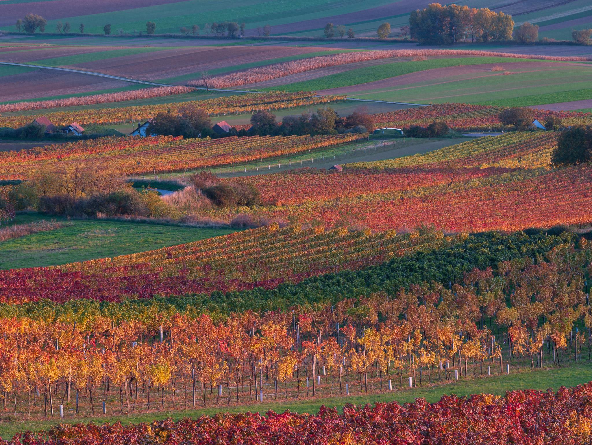 Podzimní krajina landscape