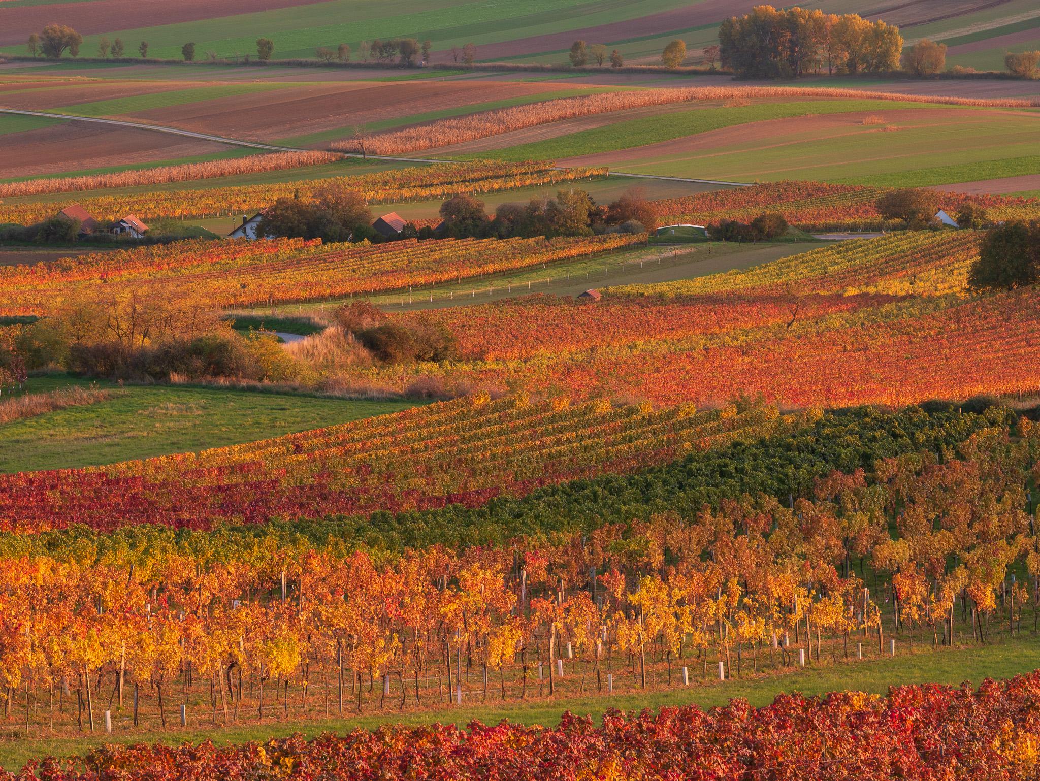 Krajina na podzim