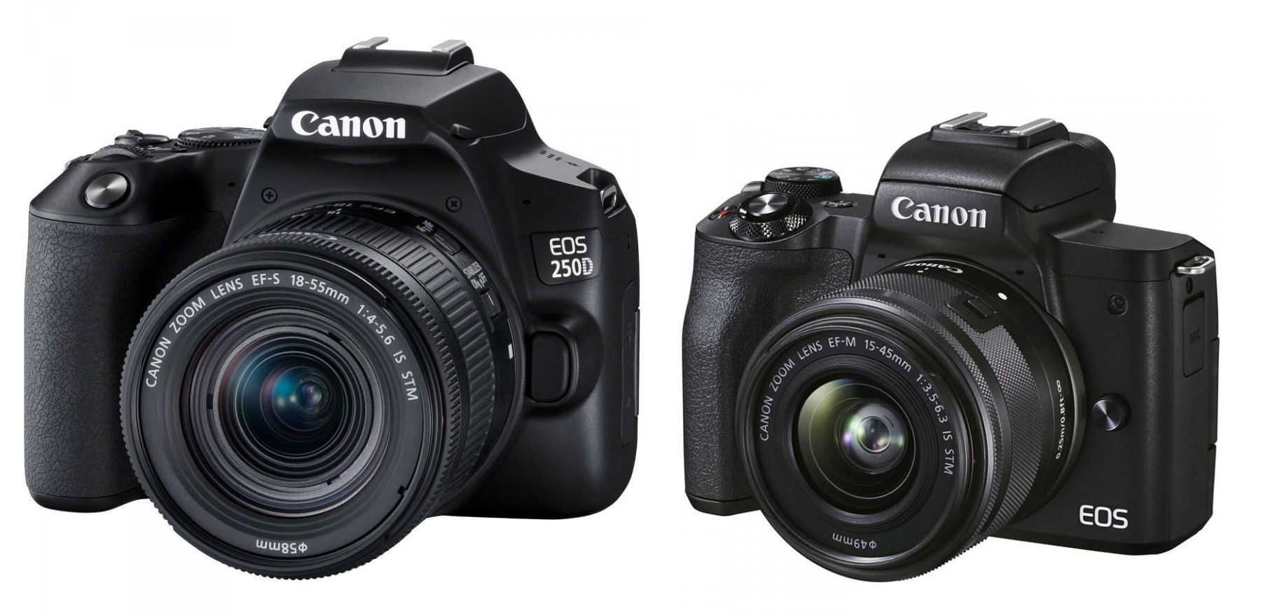 Canon M50 vs 250D